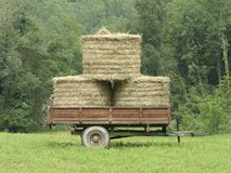 Old wagon with hay on prairie Stock Image