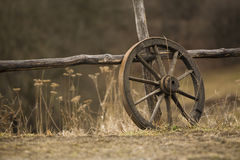 Old wagon wheel royalty free stock image