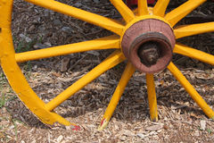 Old wagon wheel Stock Image