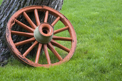 Old wagon wheel. Old, weathered wagon wheel painted orange against green grass in rain Stock Photos