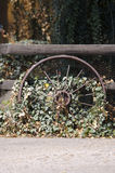 Old Wagon Wheel. And a Fence with Vines Stock Images