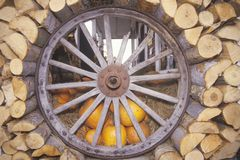 Old Wagon Wheel, Firewood and Pumpkins, Vermont Royalty Free Stock Photography