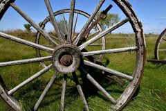 Old wood wagon wheels. Old wagon wheel with wood hub and spokes located in a meadow Stock Image