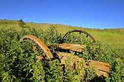 Old wagon wheels in the long grass Stock Image