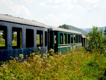 Old wagons in the middle of nature. Old rusty train wagons (blue and green) surrounded by high grass and trees. Photo taken in the middle of Slovakia royalty free stock photo