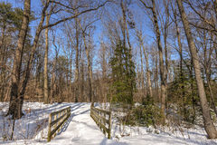 Old walking bridge in the woods covered in snow stock photography