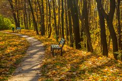 Old walkway in autumn park Royalty Free Stock Photography