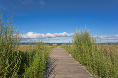 Old walkway towards blue cloudy sky Royalty Free Stock Photography