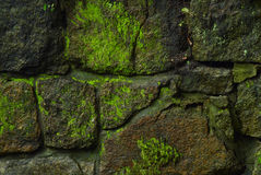 Old wall - 2 Royalty Free Stock Image