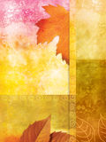 Old wall background with autumnal leaves. And stains Royalty Free Stock Photography