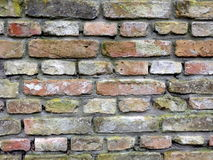 Old wall background. Brick wall texture for your background Stock Photos