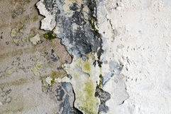 Old wall (the background) Stock Images