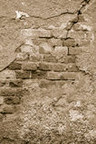 Old wall - bricks Royalty Free Stock Photography