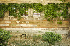 Old wall of a building with four windows and grilles royalty free stock photos