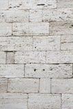 Old wall of calcareous blocks Stock Photos