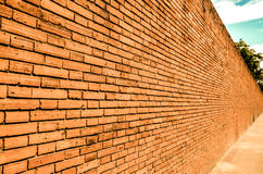 The old wall in chiangmai Royalty Free Stock Photos