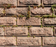 Old wall from the granite blocks Stock Photos