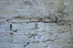 Old wall with mold and moisture. Old wall invaded by moss and humidity. Pathologies of the construction royalty free stock photography