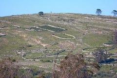 Old wall limestones Stock Photo