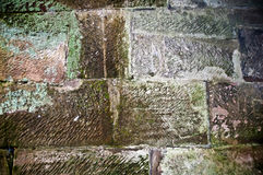 Old wall of the moss . Royalty Free Stock Photography