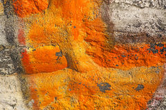 Old wall painted Royalty Free Stock Photography