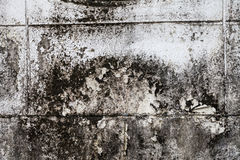 Old wall with plaster crashed Royalty Free Stock Photo