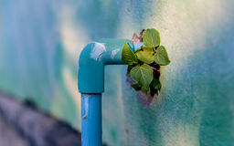 Old wall and the PVC water pipes Stock Images
