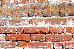 Old wall of red brick Stock Images