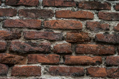 Old wall of red briks. Red brick wall Stock Images