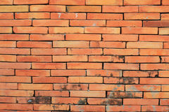 Old wall red color bricks Stock Image