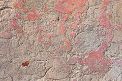 Old wall with scratched plaster Royalty Free Stock Image