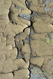Old wall. Texture Stock Photography