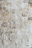 Old wall. Royalty Free Stock Image