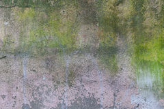 Old wall texture grunge background Stock Images