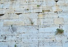 Old wall texture. From the old ruins of the Athens, Greece Stock Image