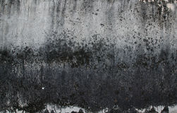 Old wall texture. In old temple Stock Photography
