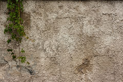 Old wall textures Royalty Free Stock Image