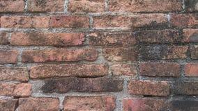 Old  wall. In  wat  chaimonkol  AYUTHAYA Stock Photography