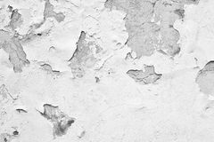 Old wall with white paint peeling off texture Royalty Free Stock Images