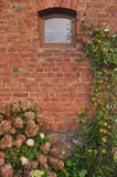 Old wall with a window. Old brick wall with a small window and some late autumn flowers Stock Images