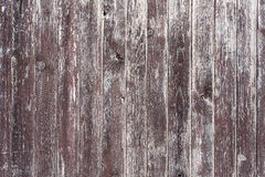 Old wall of wood 3 Royalty Free Stock Photos