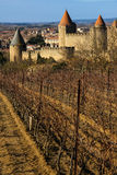 Old walled citadel and vinyards. Carcassonne. France Royalty Free Stock Image