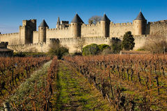 Old walled citadel and vinyards. Carcassonne. France Royalty Free Stock Photos
