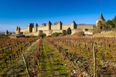 Old walled citadel and vinyards. Carcassonne. France. The old walled citadel and vinyards at sunset. Carcassonne. France royalty free stock image