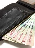 Old wallet with money Royalty Free Stock Photography