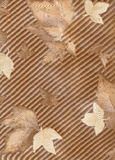 Old wallpaper element Royalty Free Stock Photography