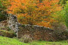 Old walls stock photography