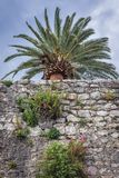 Herceg Novi in Montenegro. Old walls on the Old Town of Herceg Novi, Montenegro Stock Photography