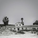 Old Warehouse. Old abandoned warehouse, black and white, palm trees behind Stock Photo