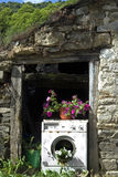 Old washing machine used as a planter Royalty Free Stock Photo